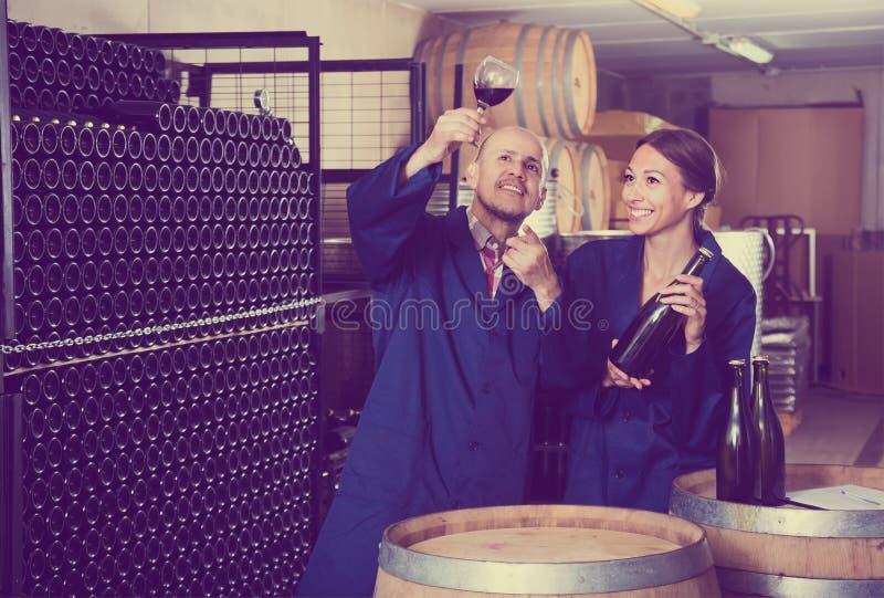 Dois trabalhadores amigáveis da adega que guardam o vidro do vinho no secti do envelhecimento foto de stock
