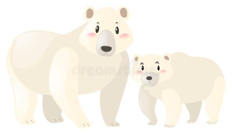 Dois ursos polares no fundo branco ilustração royalty free