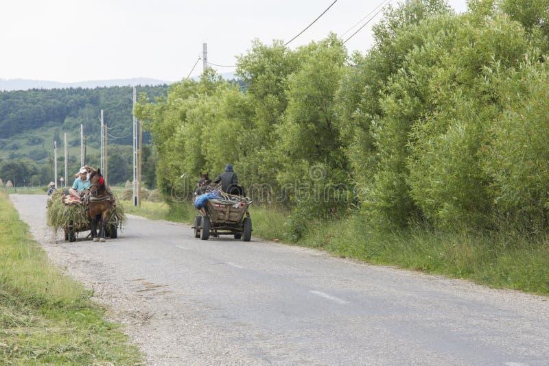 Dois vagões puxados por cavalos na estrada em Romênia imagem de stock royalty free