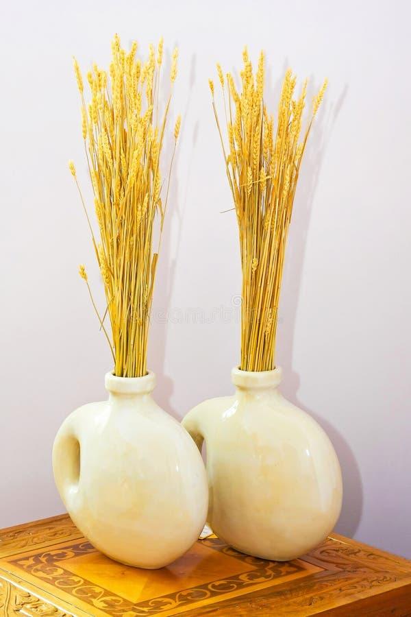 Dois vasos foto de stock royalty free