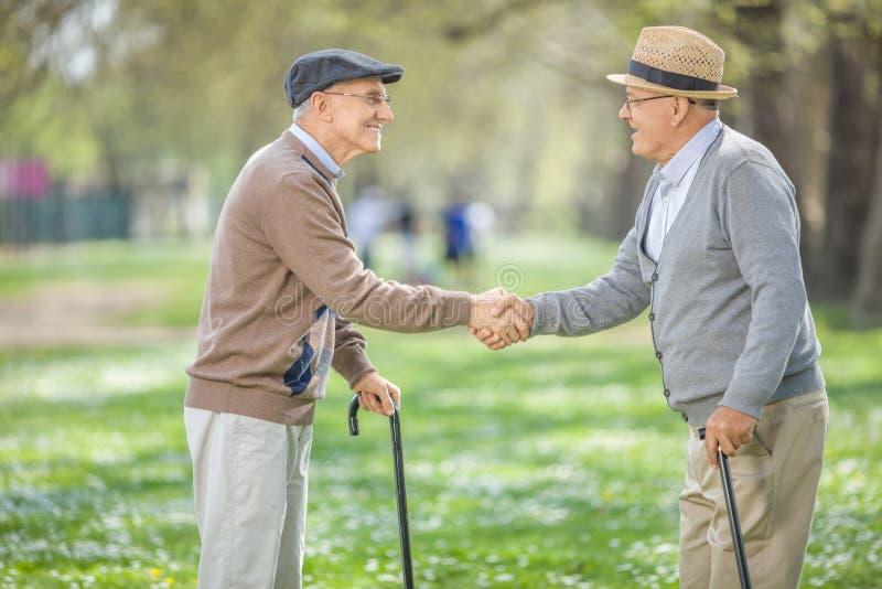 Dois velhos amigos que encontram-se no parque e que agitam as mãos foto de stock