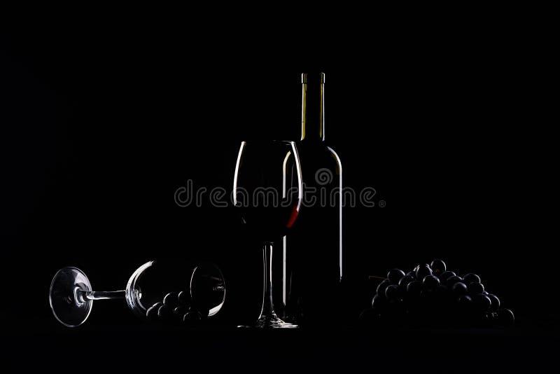 Dois vidros, garrafa do vinho e uvas foto de stock
