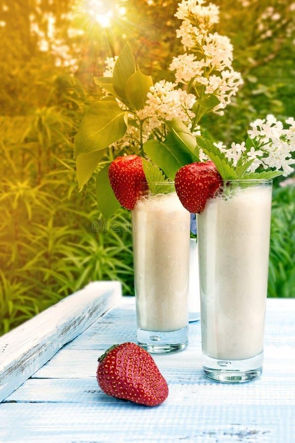 Dojny smoothie z truskawkami i bananem na tle zielone rośliny w zmierzchu w słońcu Pionowo rama zdjęcia royalty free