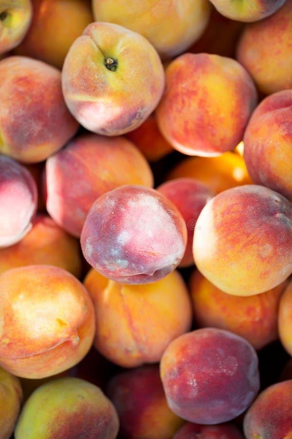 Dojrzałe organicznie brzoskwinie Odgórny widok zdjęcia stock