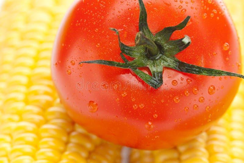 Dojrzała żółta kukurudza i pomidor zdjęcie royalty free