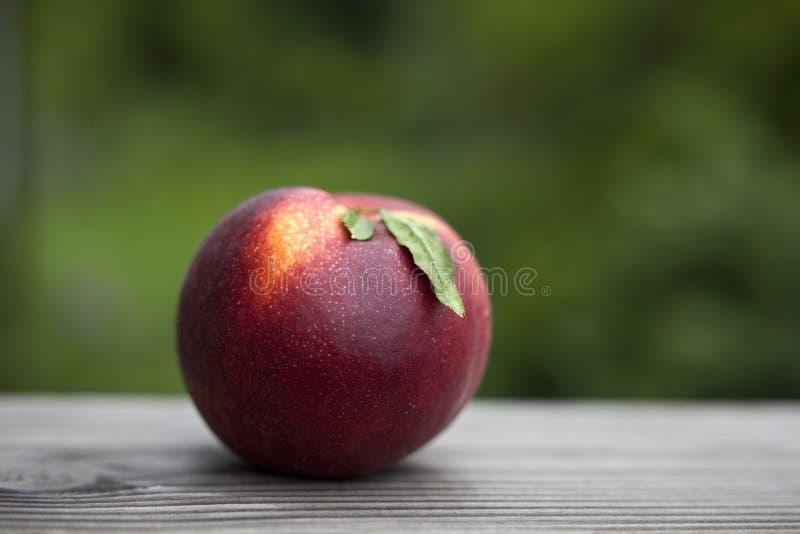 Dojrzała czerwona soczysta brzoskwinia podnosząca jeść przygotowywająca i fotografia royalty free