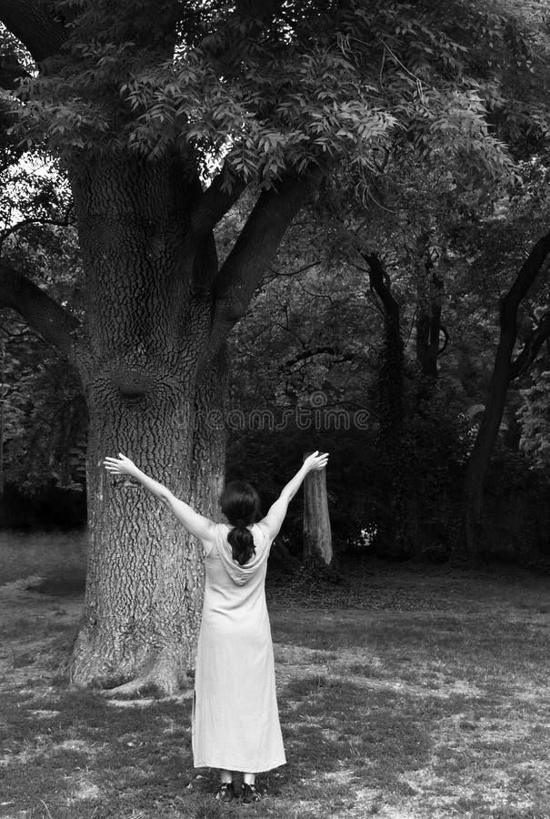 Dojrzała kobieta blisko drzewa w parku obraz royalty free