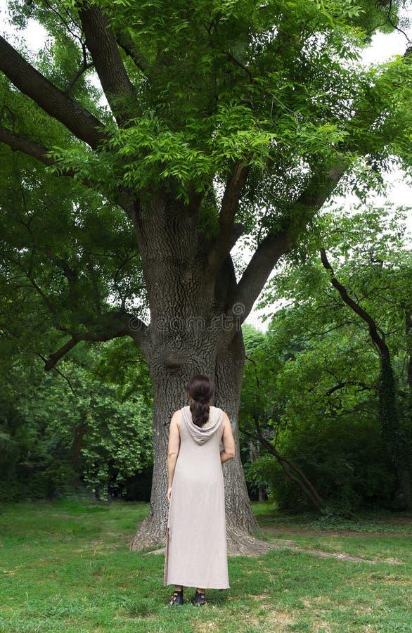 Dojrzała kobieta blisko drzewa w parku zdjęcie stock