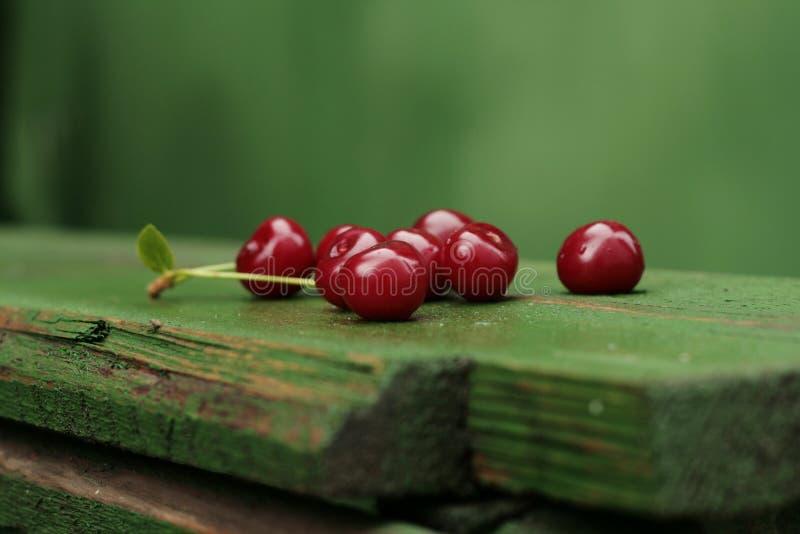 Dojrzała kwaśna wiśnia obrazy stock