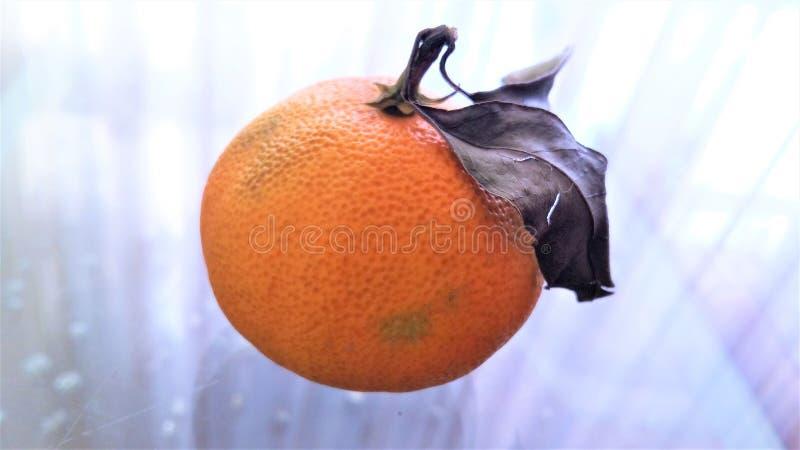 Dojrzała mandarynka z dwa liśćmi kłama na szkło stole obrazy royalty free