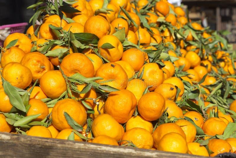 Dojrzałe mandarynki na rynku w Maroko obraz stock