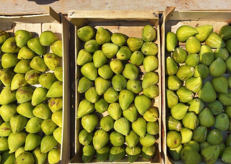 Dojrzałe owoc zielone figi w drewnianych pudełkach zdjęcie stock