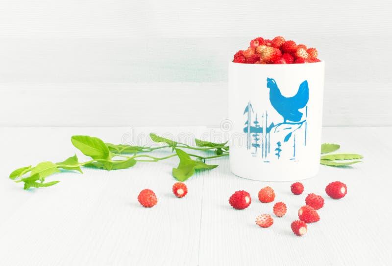 Dojrzałe truskawki z rośliną opuszczają na błękitnym drewnianym tle, truskawki w białym starym kubku, zdrowy karmowy pojęcie zdjęcie royalty free