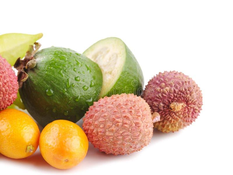 Dojrzałego Soczystego Tropikalnego lato owoc Lychee cytrusa Carambola Sezonowego Kumquat Pasyjna owoc Feijoa Egzotyczny mieszkani zdjęcie royalty free