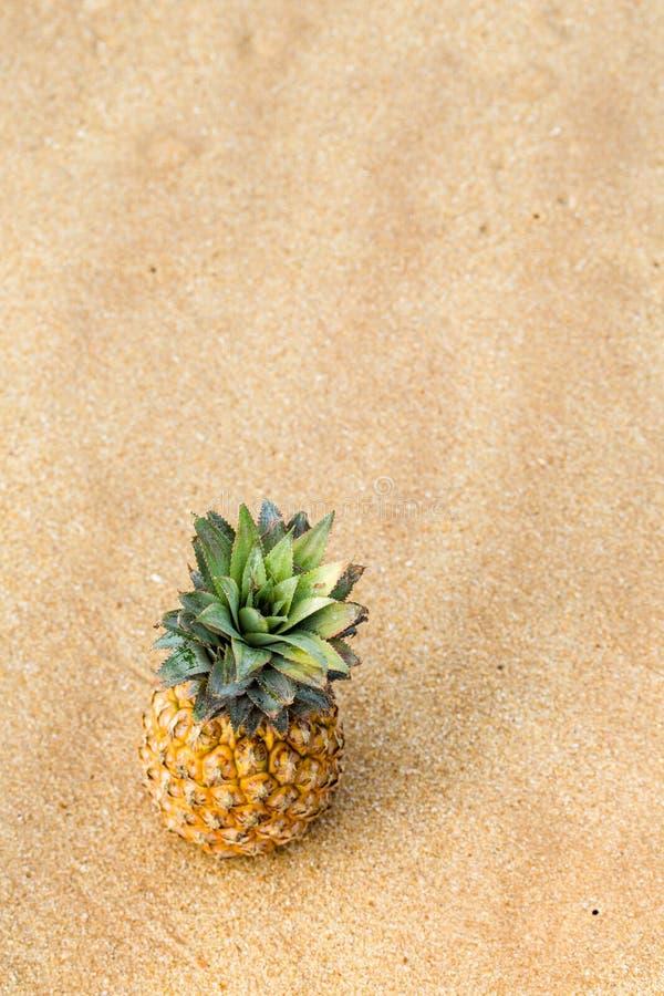 Dojrzały ananas, odgórny widok zdjęcia stock
