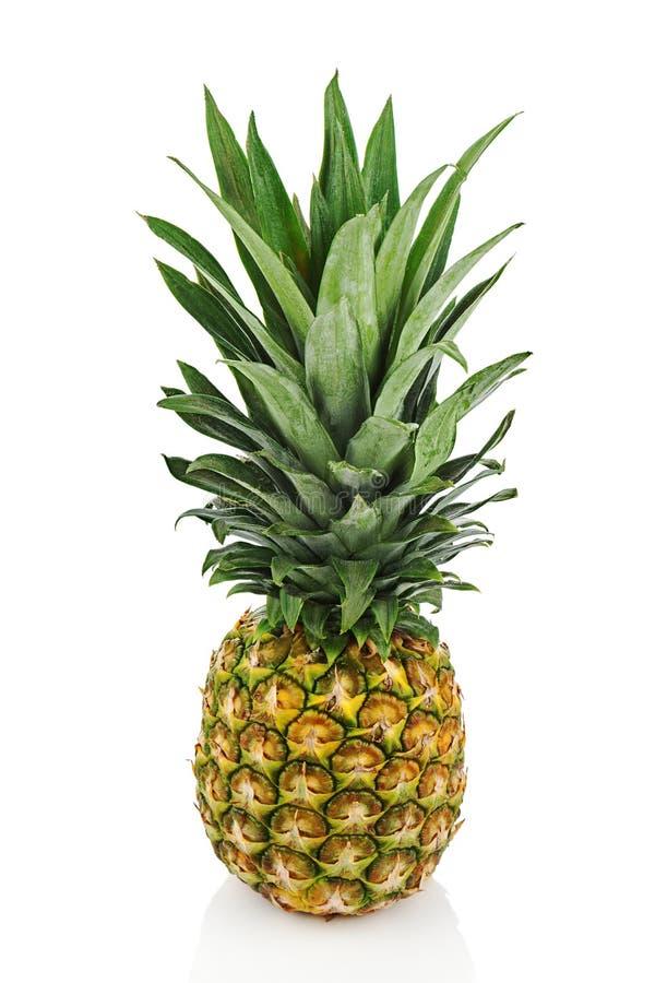 Dojrzały cały ananas odizolowywający na białym tle. fotografia stock