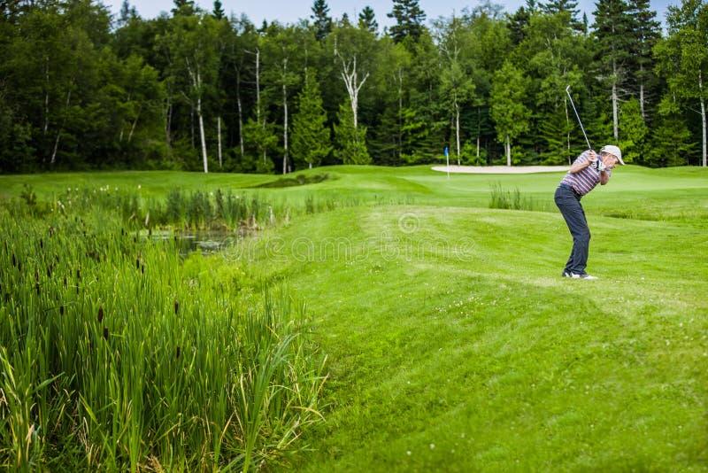 Dojrzały golfista na polu golfowym obrazy royalty free