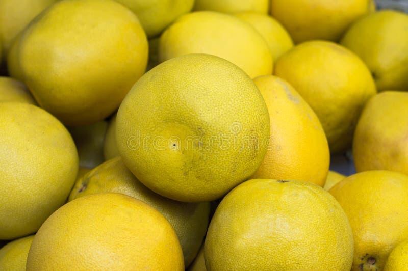 Dojrzały grapefruitowy, żółty przy warzywo rynkiem, sprzedaż tło Odgórny widok Zakończenie zdjęcia royalty free