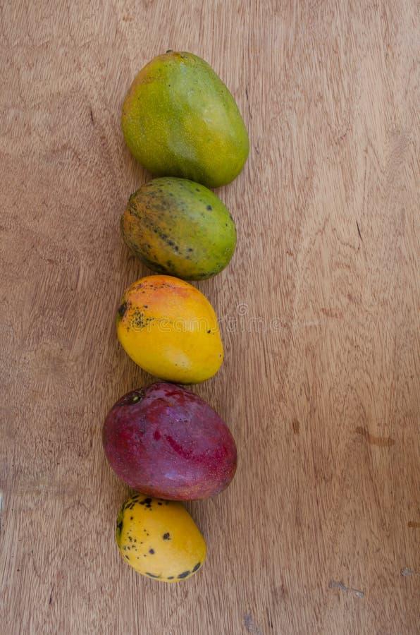 Dojrzały Juley, Connon, Irwin I Greenskin mango, rudzik, obraz stock