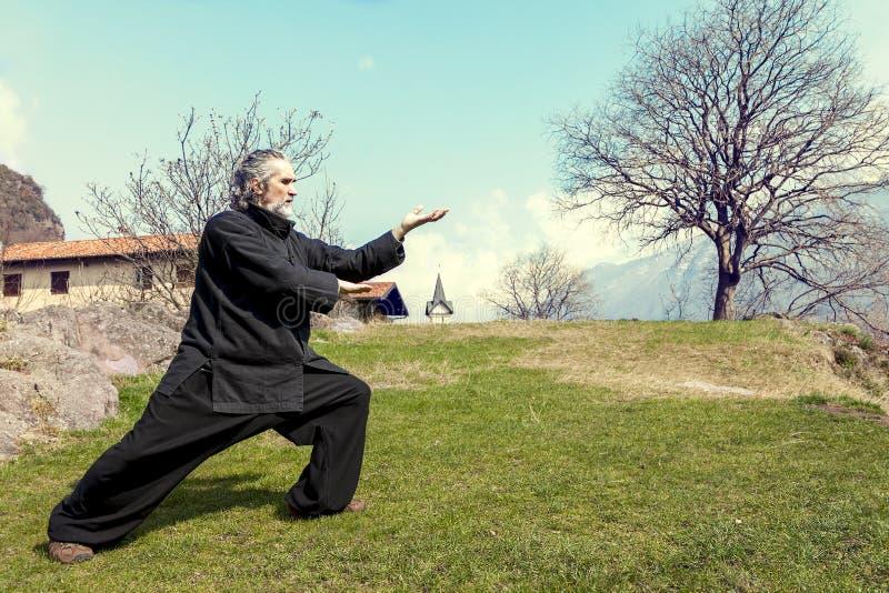 Dojrzały mężczyzna ćwiczy Tai Chi dyscyplinę outdoors obrazy royalty free