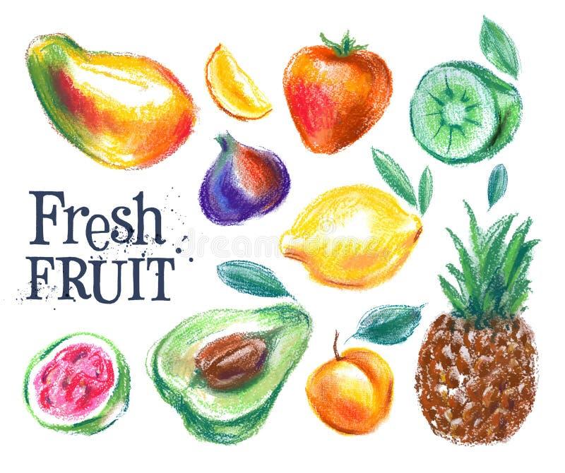 Dojrzały owocowy wektorowy loga projekta szablon świeże jedzenie ilustracja wektor