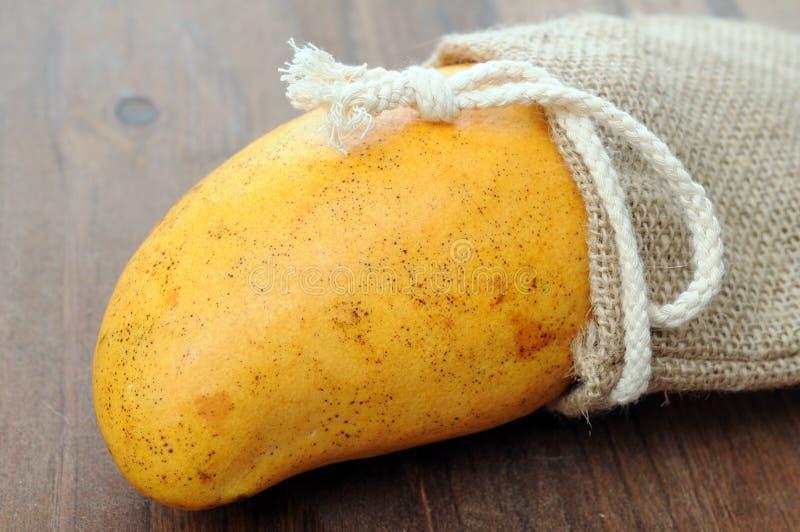 Dojrzały pojedynczy mango zdjęcia stock