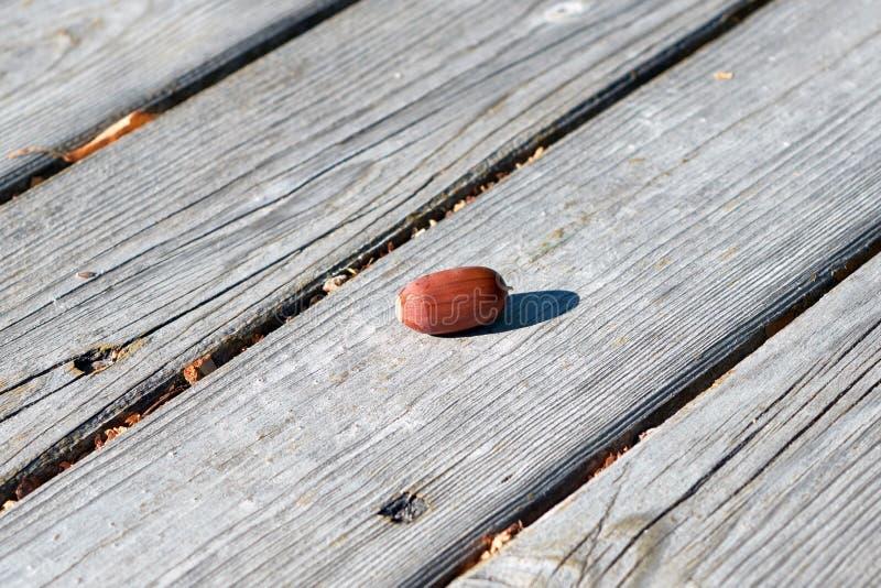 Dojrzały spadać brown acorn kłama na powierzchni drewniane deski fotografia stock