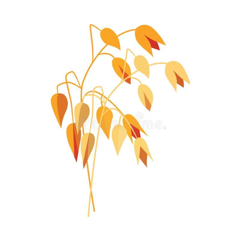 Dojrzały suchy owsa ucho na trzonie w mieszkanie stylu - wektorowa ilustracja żółty cały zboże kolec oatmeal royalty ilustracja