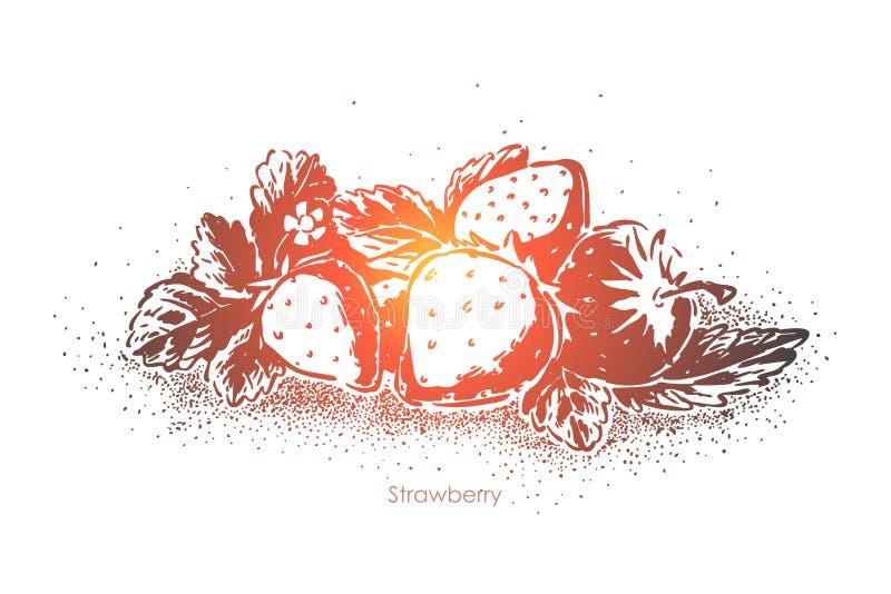 Dojrzały truskawki zbliżenie, soczyste jagody i liście, owocowy dżemu składnik, słodki odżywki jedzenie, organicznie posiłek royalty ilustracja