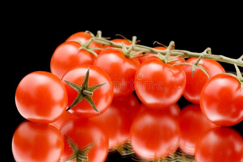 dojrzały zbliżenie pomidor zdjęcie stock