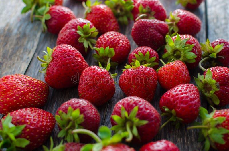 Dojrzałych czerwonych truskawek jaskrawy światło fotografia stock