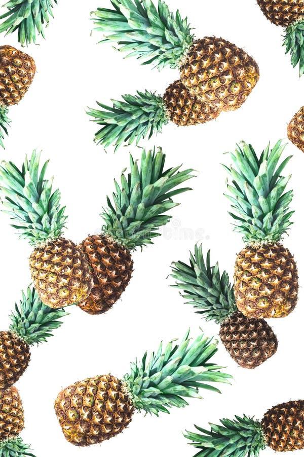 Dojrzali świezi ananasy ilustracja wektor