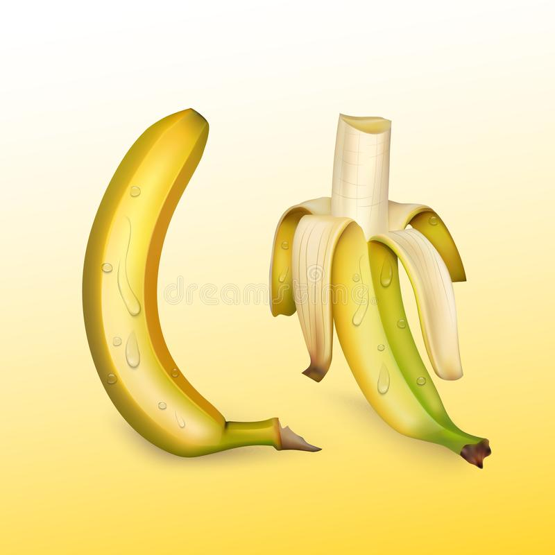 Dojrzali banany na jaskrawym tle, realistyczna wektorowa ilustracja royalty ilustracja