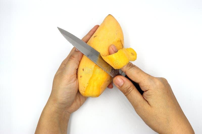 Dojrzali mango, żółta mangowa łupa z nożem odizolowywającym na czarnym tle zdjęcie royalty free