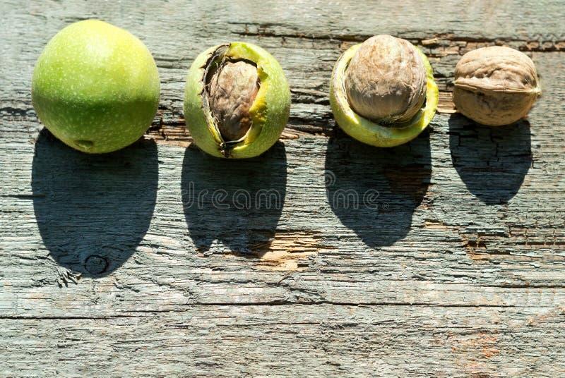 Dojrzali orzechy włoscy na drewnianego tła odgórnym widoku zdjęcia royalty free