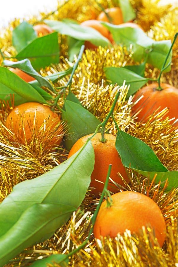 Tangerines w ornamentach zdjęcie stock