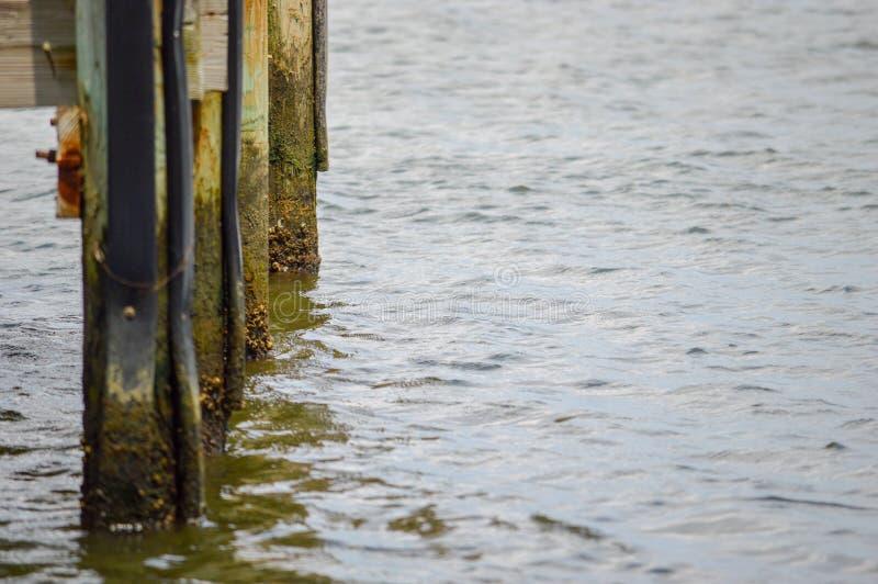 Dokpijlers in het water van de de zomerrivier stock fotografie