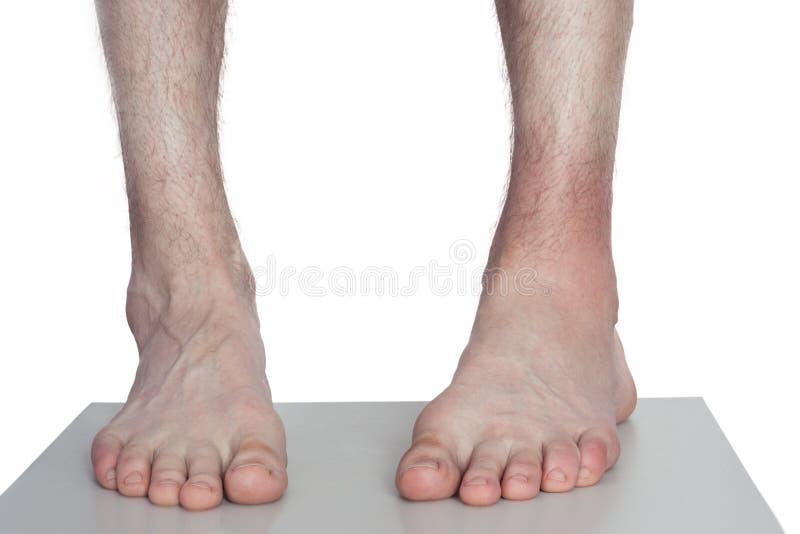 Doktor Bandaging Man Ankle arkivbilder