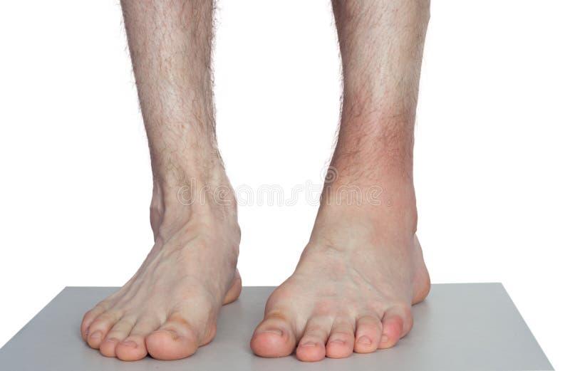 Doktor Bandaging Man Ankle fotografering för bildbyråer