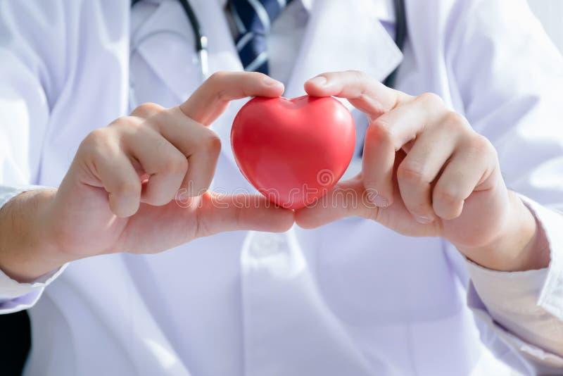Doktor, der ein Herz hält lizenzfreie stockfotografie