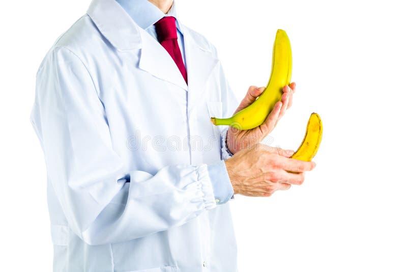 Doktor im weißen Mantel, der die großen und kleinen Bananen zeigt stockfotos
