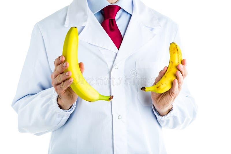 Doktor im weißen Mantel, der die großen und kleinen Bananen zeigt lizenzfreie stockfotos
