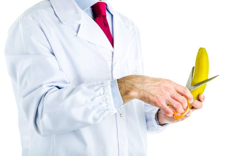 Doktor im weißen Mantel, der eine Banane mit Scheren schneidet stockfoto