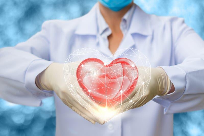 Doktor med hjärta i händer arkivbild