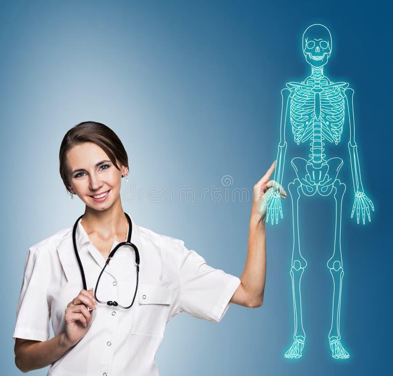 Doktorfrau, die auf dem Zeichnen des menschlichen Skeletts zeigt stockbild