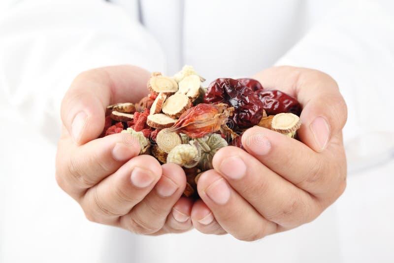 Doktorholdinghandvoll chinesische Kräutermedizin. stockfotos