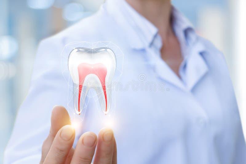 Doktorn visar tanden arkivfoto