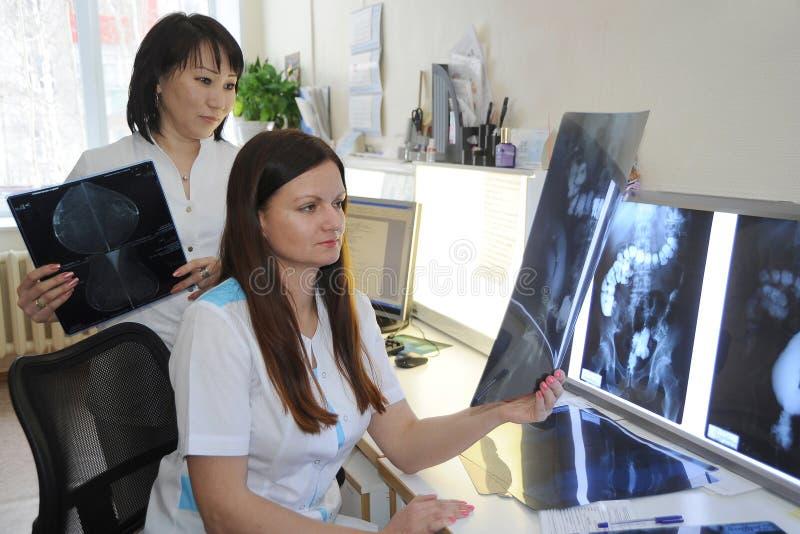 Doktorradiologen arbeiten im Labor mit Röntgenstrahlphotographien stockbild