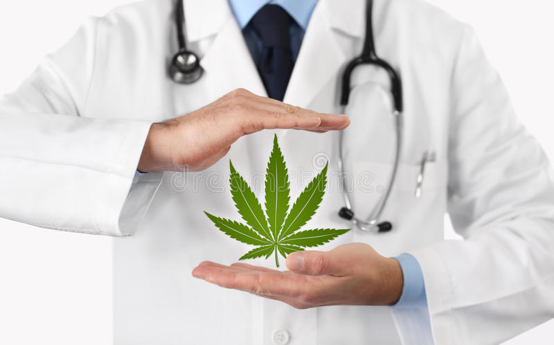 Doktorshänder med begrepp för marijuanasymbolläkarundersökning royaltyfri foto
