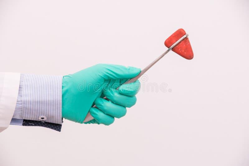 Doktorska ręka trzyma medycznego narzędzie, kolanowego szarpnięcia młot obraz stock